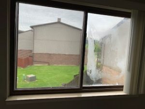 Drafty Windows roselle